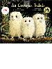 https://bo.escadalivraria.com/fileuploads/Produtos/thumb_escada_livraria_livros_escolares_000814_9789897076817.JPG